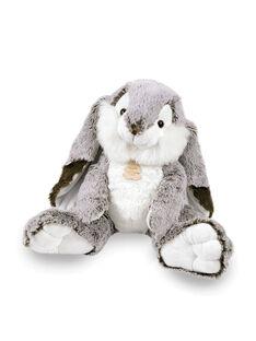 Doudou lapin Marius 30 cm LAPIN MARIUS / 12PJPE001MPE999