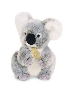 Peluche koala Les authentiques 20 cm KOALA AUTH 20 / 14PJPE056PPE999