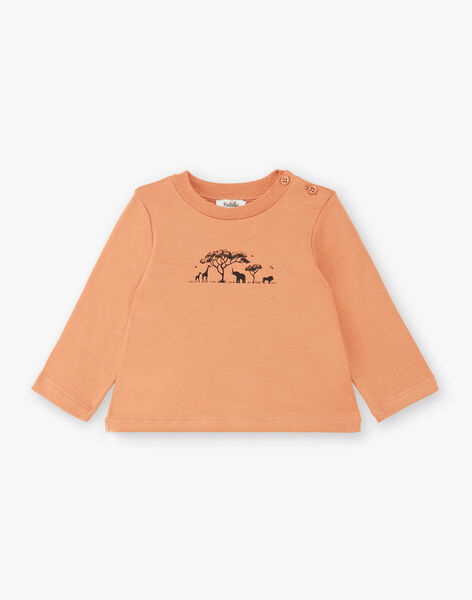Tee-shirt garçon manches longues pécan  CAESAR 21 / 21VU2012N0FI821