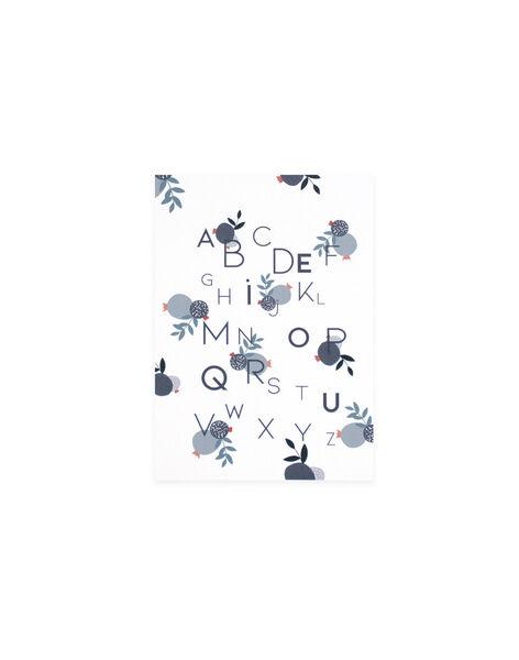 Affiche abecedaire a4 AFFICHE ABCD A4 / 20PCDC010DMU999