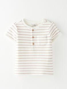 Tee Shirt Manches Courtes Jaune BODERICK 20 / 20IU2051N0E114
