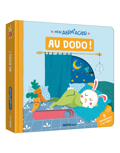 Livre Anim'agier Au Dodo ANIMAGIER DODO / 18PJME004LIB999