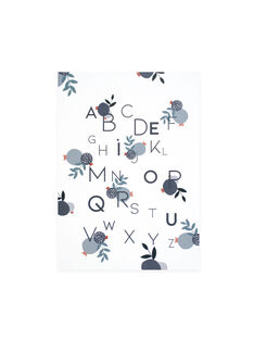 Affiche abecedaire a3 AFFICHE ABCD A3 / 20PCDC011DMU999