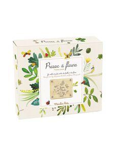 Presse a fleurs PRESSE A FLEURS / 21PJJO011AJV999