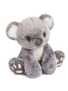 Peluche Koala Histoire d'Ours grise 25 cm dès la naissance KOALA HO 25CM / 19PJPE015PPE999