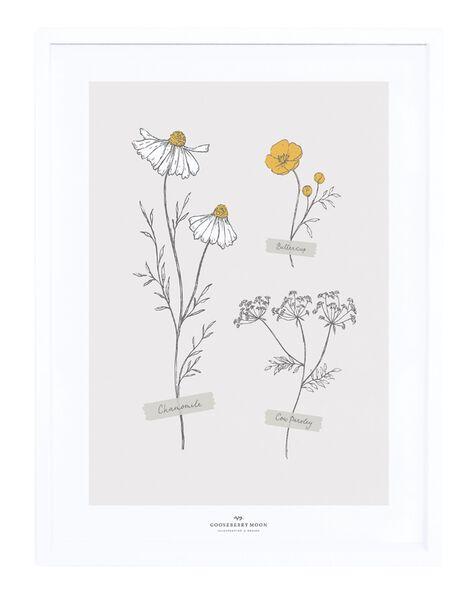 Affiche botanic 30x40cm cadre blanc AF BOTANI 30X40 / 21PCDC015DMU999