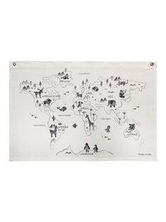Carte du monde CARTE DU MONDE / 20PCDC022DMU999