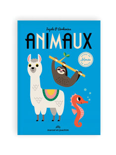"""Livre géant """"Animaux autour du monde"""" Marcel & Joachim bleu dès 2 ans 34x46 cm ANIMAUX MONDE / 19PJME017LIB999"""