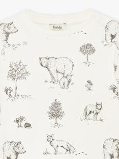 Tee-shirt imprimé ours coton biologique DAWSON 21 / 21IU2012N0FI816